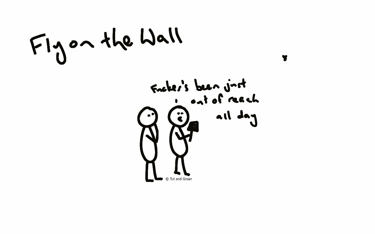 Tut and Groan Fly on the Wall cartoon