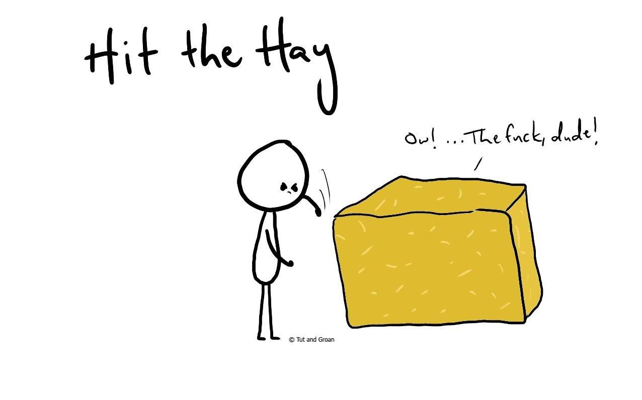 Tut and Groan Hit the Hay cartoon