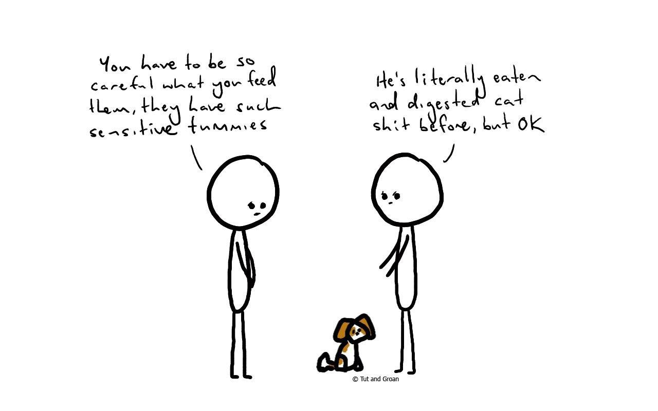 Tut and Groan Sensitive Tummy cartoon
