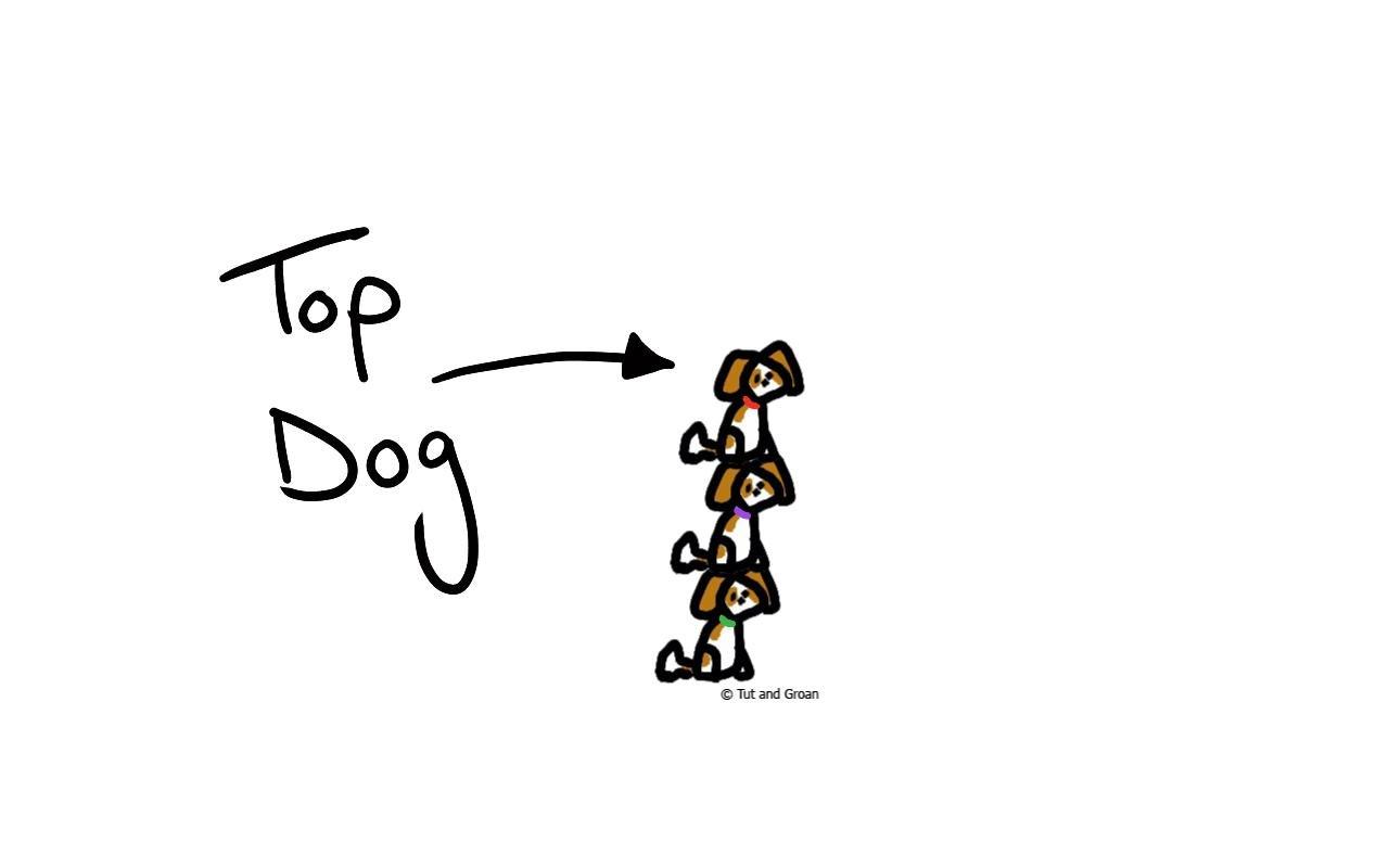 Tut and Groan Top Dog cartoon
