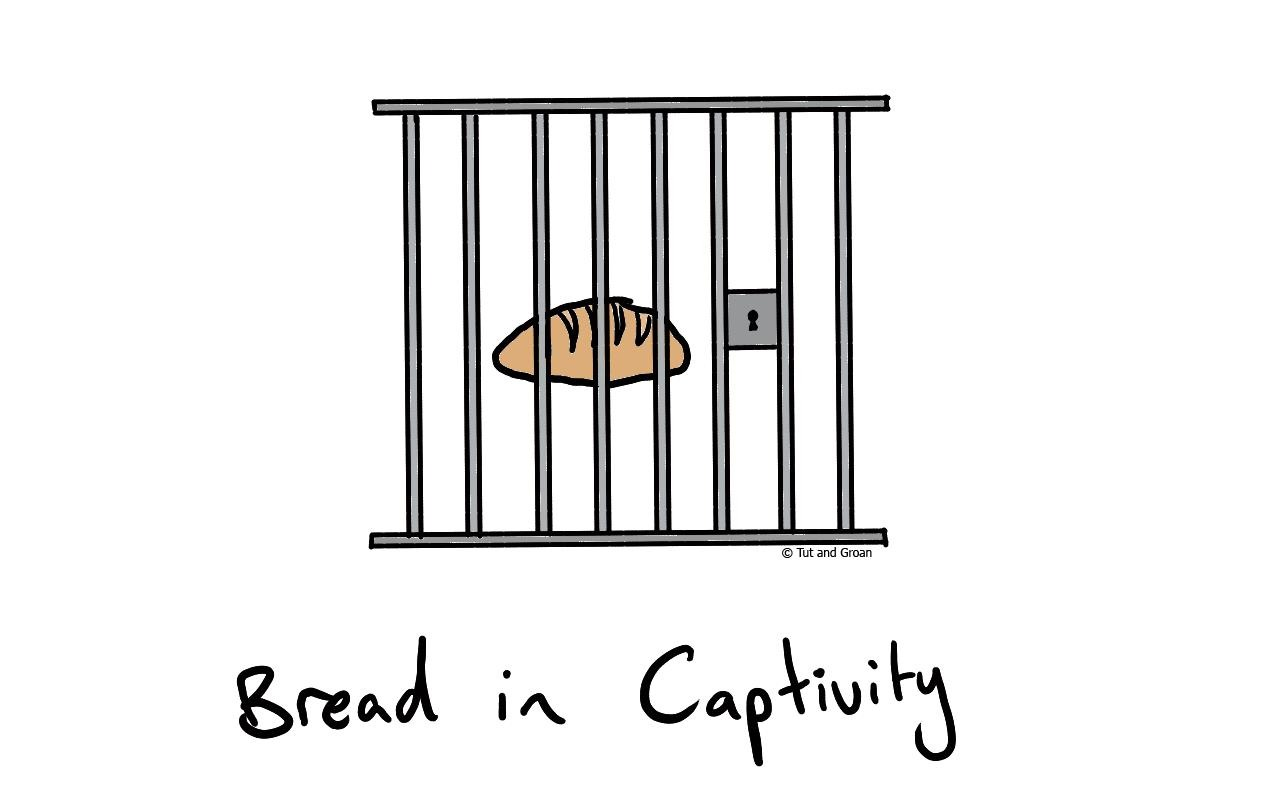 Tut and Groan Bread in Captivity cartoon